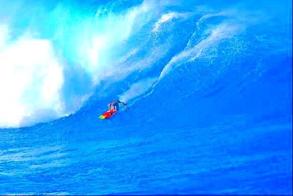 le-surf.jpg